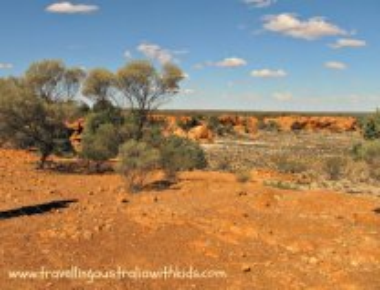 Golden Outback