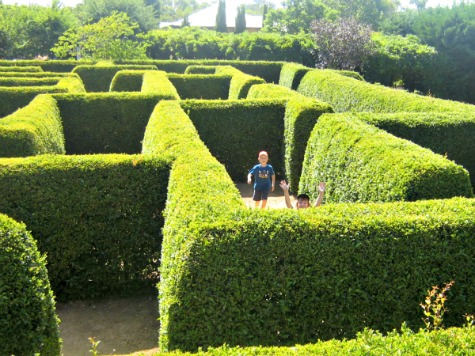 The Maze Mandurah