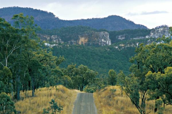 Carnarvon Gorge National Park