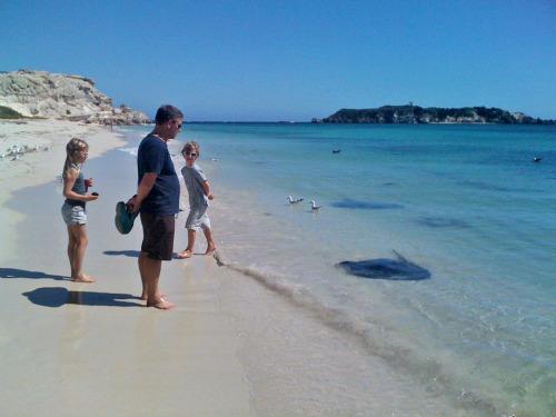 Hamlin Bay
