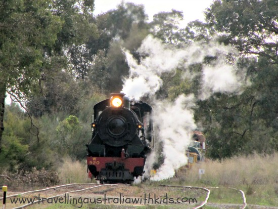 Hotham Valley Train