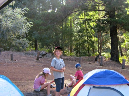 Baden Powell Dwellingup